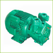 Single Phase Self Priming Monoblock Pumps-DMS SERIES